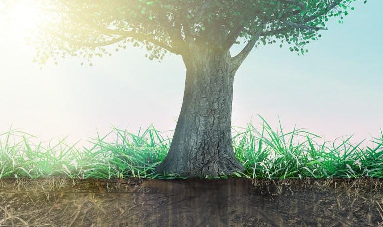 Root Cause Analysis Masterclass Virtual Event